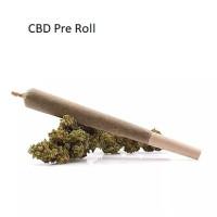 CBD Pre Roll